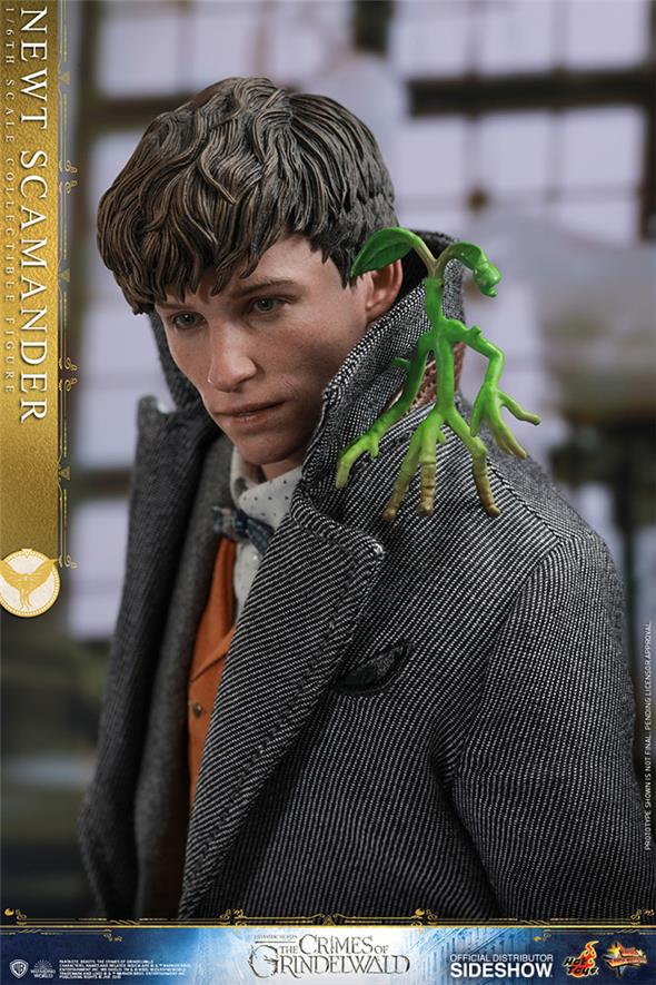 1/6 HOT TOYS - FANTASTIC BEASTS 2 - NEWT SCAMANDER