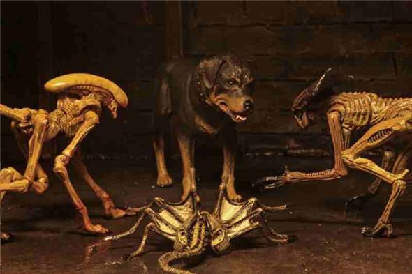 NECA - ALIEN 3 ACCESSORY CREATURE PACK